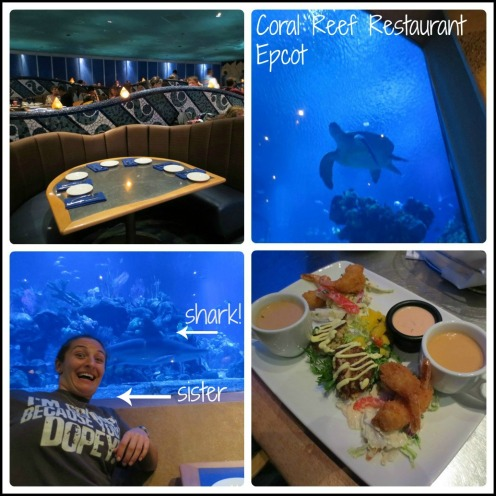 Coral Reef Collage