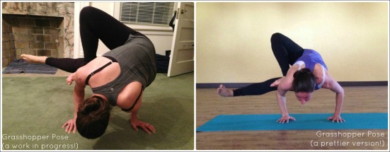 Grasshopper Pose Comparison