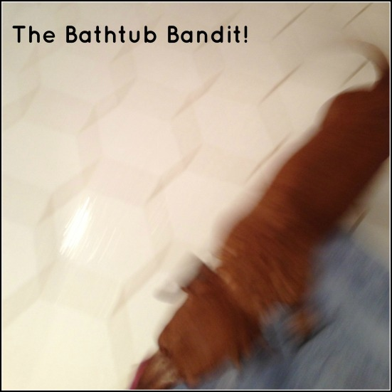 The Bathtub Bandit