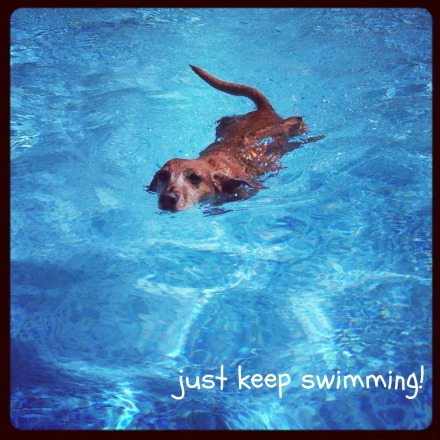 Maddie Swimming