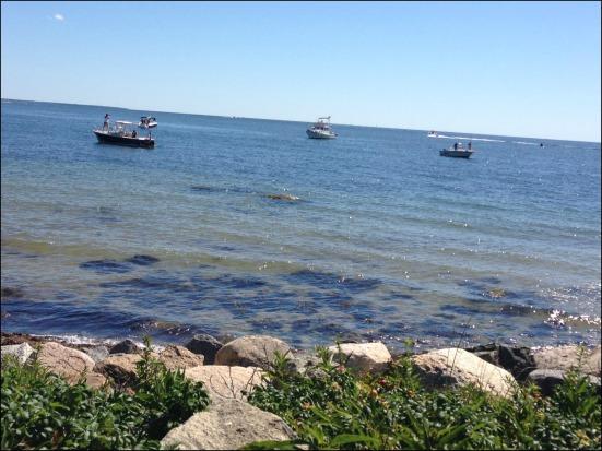 Boat Spectators