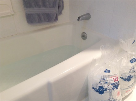 Ice Bath Water Only