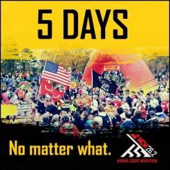 MCM 5 Days