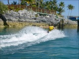 Disney Cruise: Sail Away &Nassau
