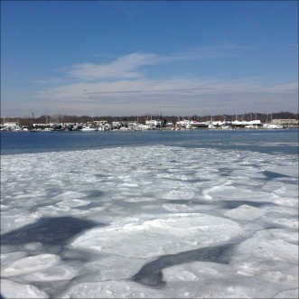 Harbor Ice