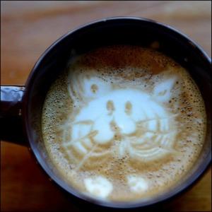 cat-achinno
