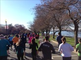 RACE RECAP – Cherry Blossom 10 Mile Run