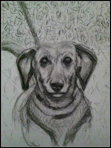 Madison Portrait 1