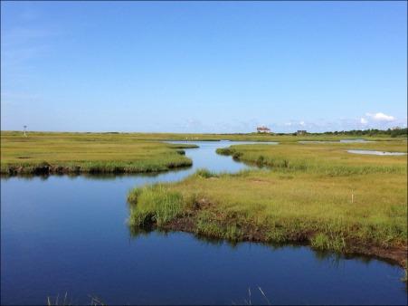 Marsh Run