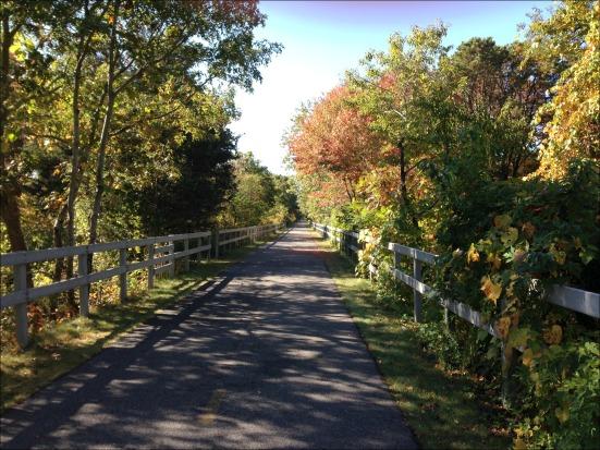 20 mile run path 2
