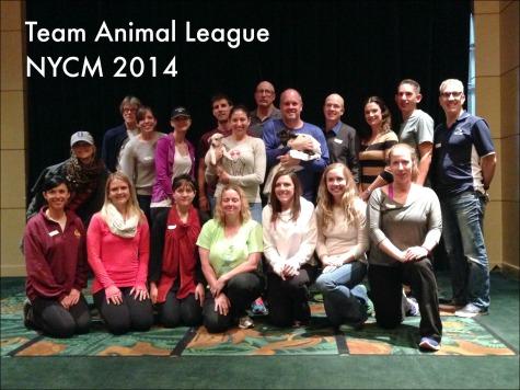 Team Animal League