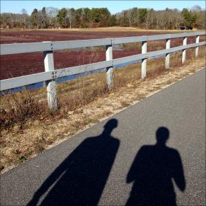 Cranberry Bog Run