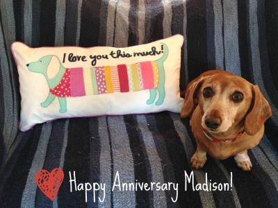Madison Anniversary
